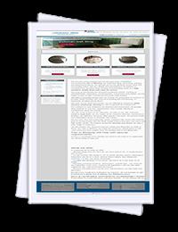 Medway Tiler website website